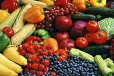 Alimentation naturelle et biogenique