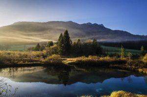 Les cinq principes de la naturopathie