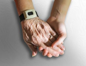 Alimentation crue et vieilissement