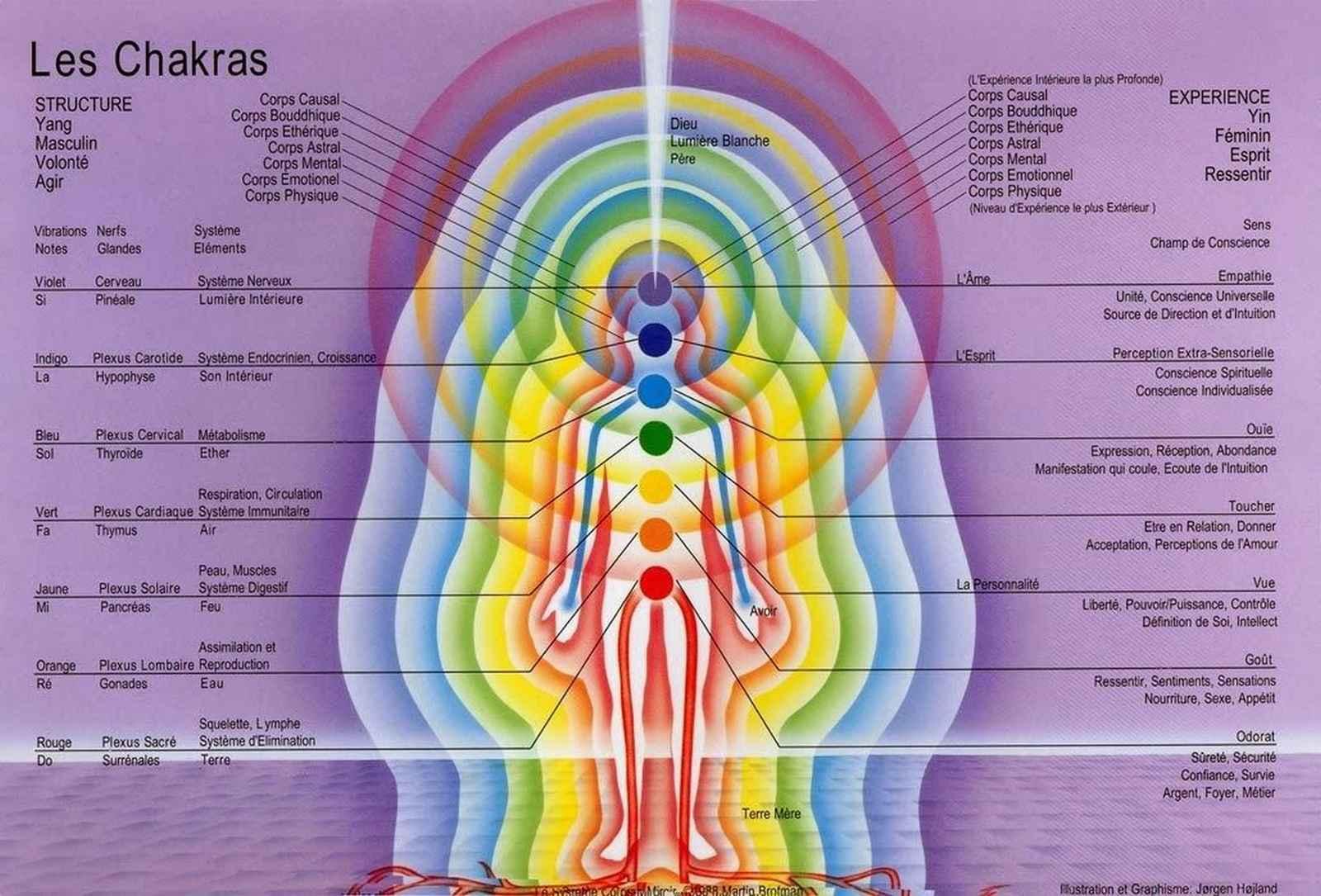 Plans vibratoires