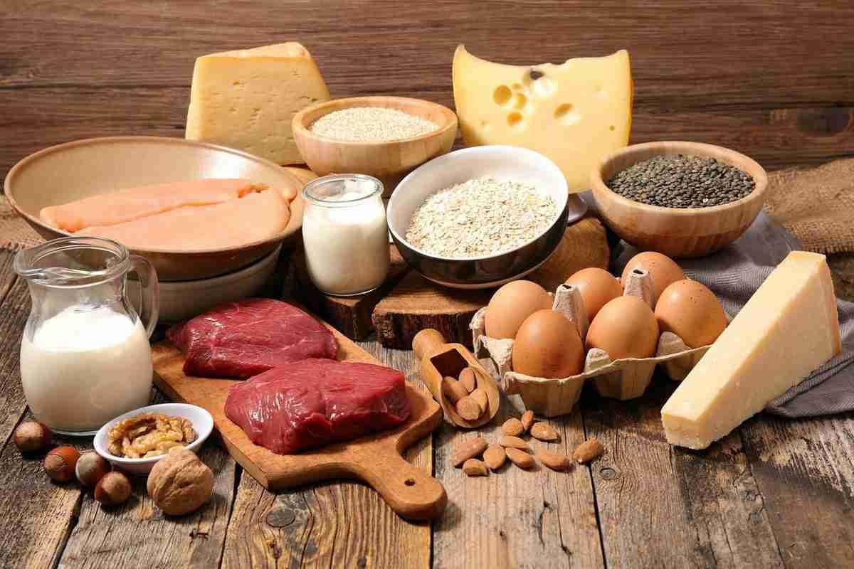 Proteínas y aminoácidos: los componentes esenciales ...