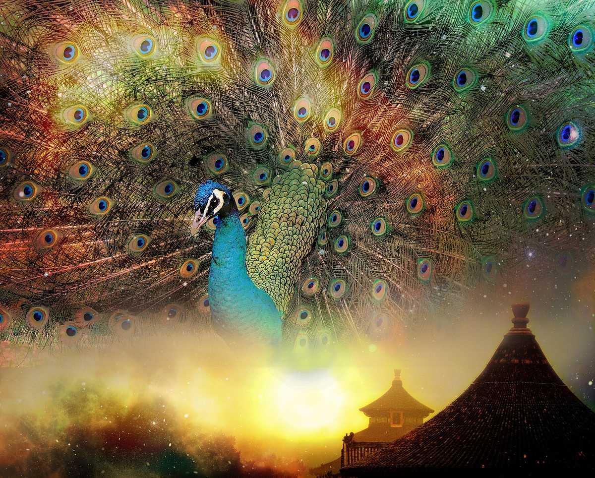 Le Feng Shui existe depuis plus de 6000 ans et devient de plus en plus populaire à l'Occident.