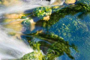 Pureté de l'eau