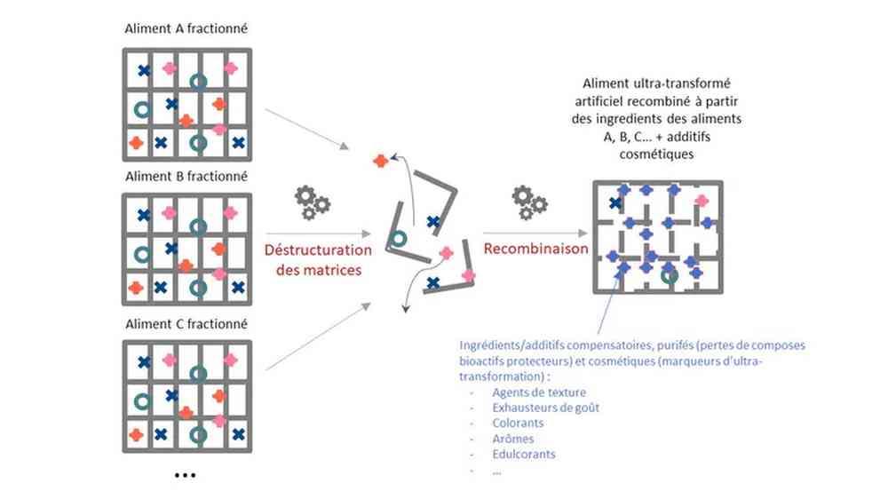Schéma conceptuel de l'aliment ultratransformé