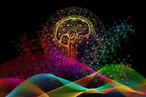 Cerveau droit