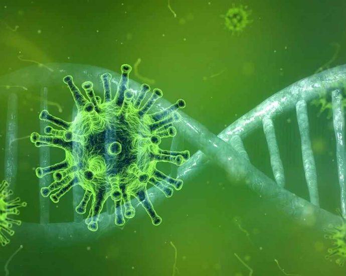 Vaccin à ARNm Covid-19