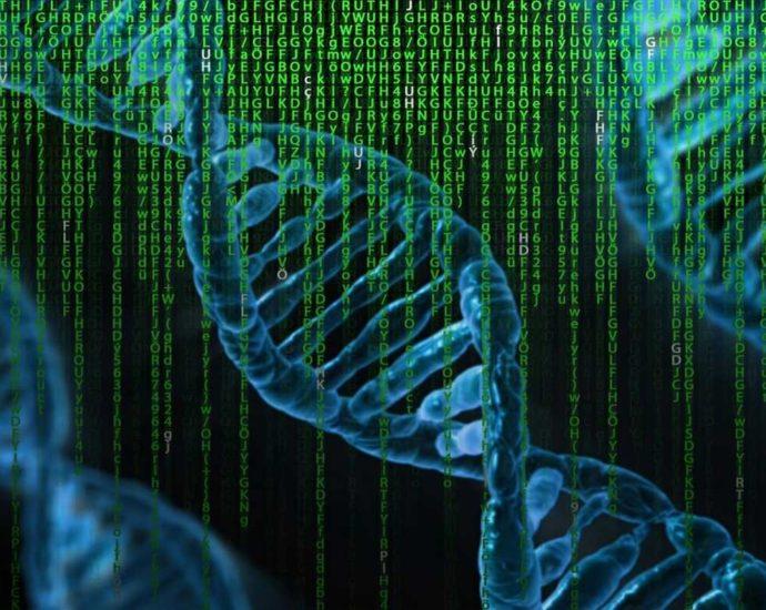 ADN, Génétique