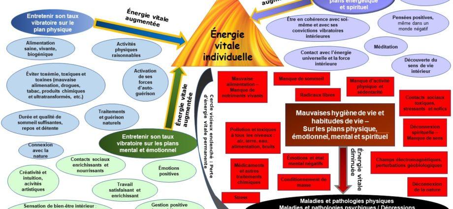 Infographie Hygiénisme - Art d'augmenter le taux vibratoire